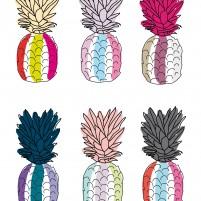 Ananas_Laurajohn's.K